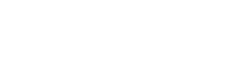 puntOorg International Journal